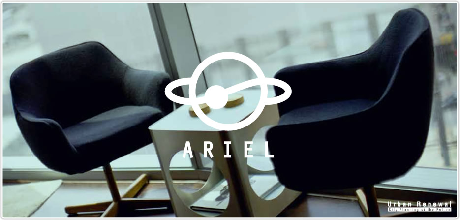 The expert of real estate business, ARIEL
